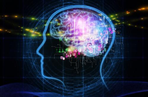Le neuroscienze in azienda