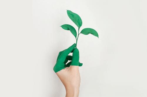 sostenibilità copernico
