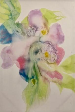 Eldi Veizaj Gardenia