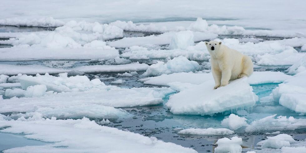 sostenibilità ambientale scioglimento ghiacciai